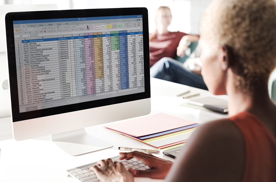 person looking at spreadsheet